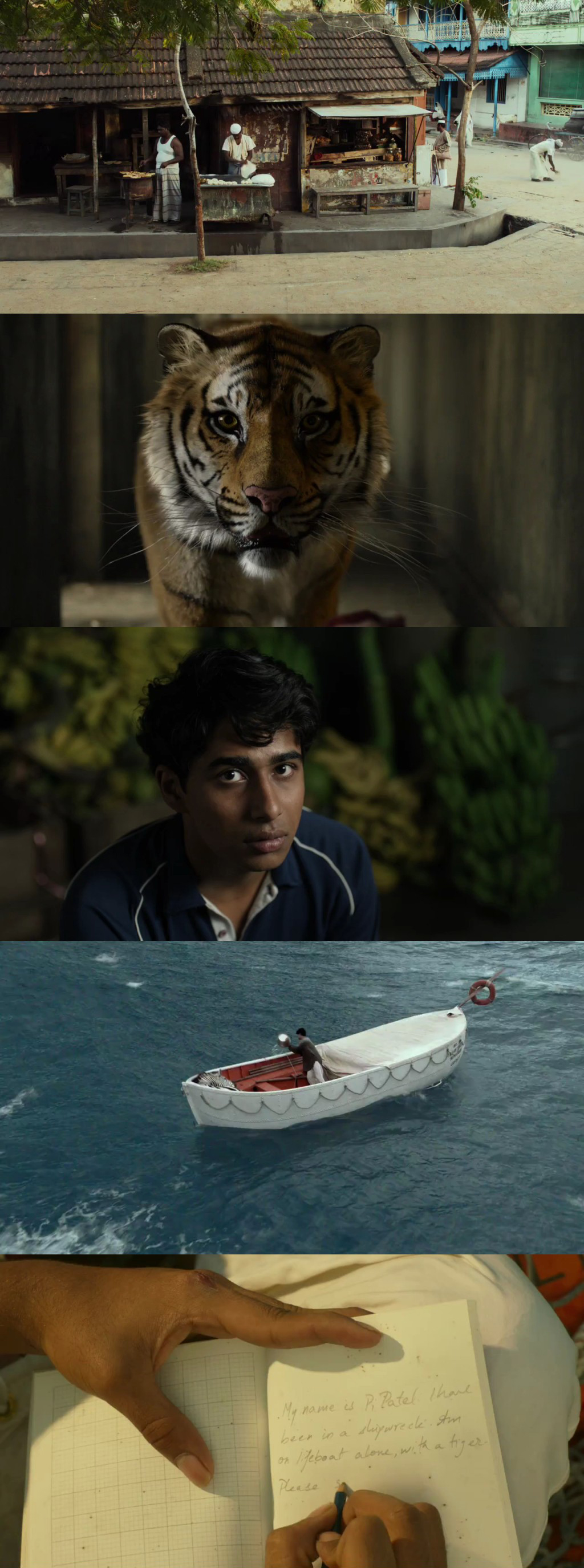 Life of Pi (2012) 1080p Español Latino descarga