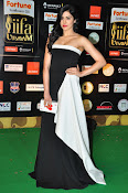 Adah Sharma latest photos at iifa day 2-thumbnail-1