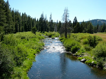 Little Truckee River, CA