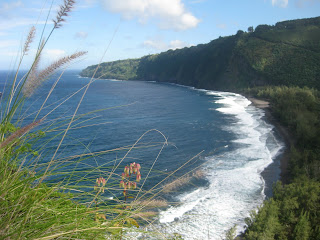 From the switchback trail, looking at Waipi'o Valley's black sand beach