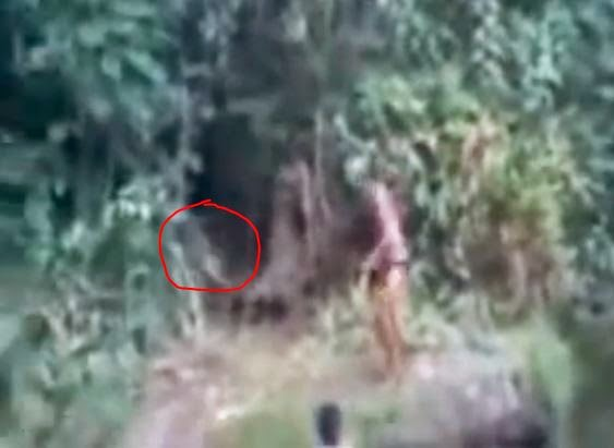 Teenagers Captured A Video of a Humanoid Creature in Brazil