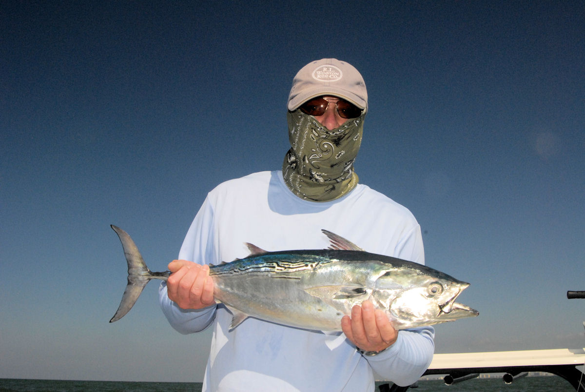 Sarasota siesta key florida fishing guide service and for Chevy florida fishing report
