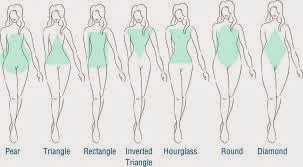 different type of body shape