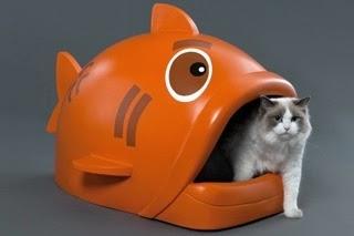 Potrebbeesserepeggio wc watching le toilette per gatti - Bagno autopulente costo ...
