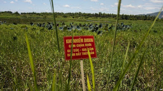 Agent Orange Dioxin Sign