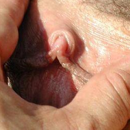 Pussy daddys cock in my mouth sucking