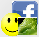 Social network websites have been unavoidable part of our modern life, especially Facebook . it is important to open Facebook to know more about the happenings at surrounding. Facebook smilies are commonly used in chatting with a beloved ones and friends. Have you ever wished to send an image to your beloved through Facebook chat box.? if yes I am sure you will be able to do so by reading this article.