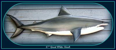 Wood-N-Arts-shark