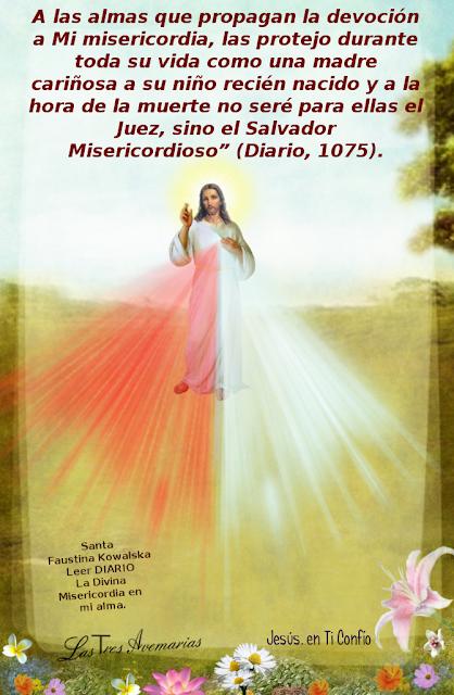 promesa para los que propagan la divina misericordia
