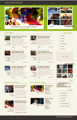 Narcilicious wordpress theme