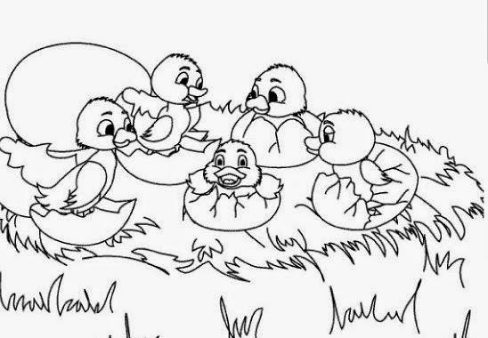 Cuentos infantiles: Dibujos del patito feo para colorear.