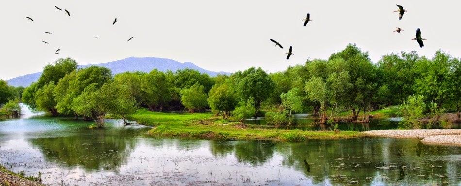 Kırmıtlı Kuş Cenneti