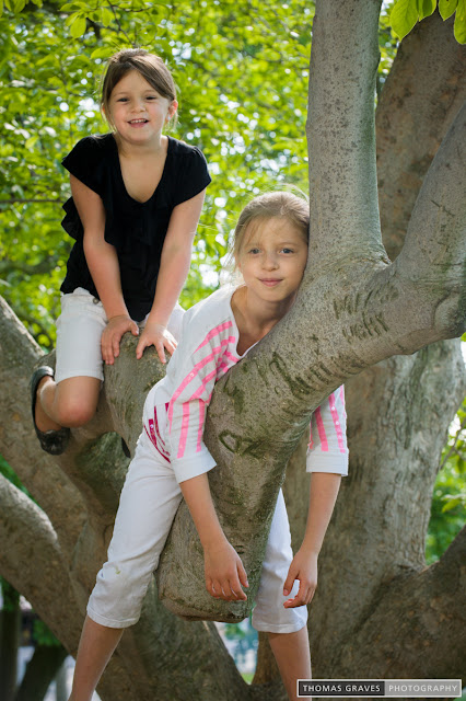 Two young girls have fun climbing a tree.