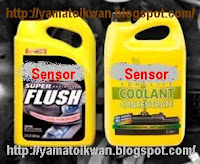 Flush dan Coolant