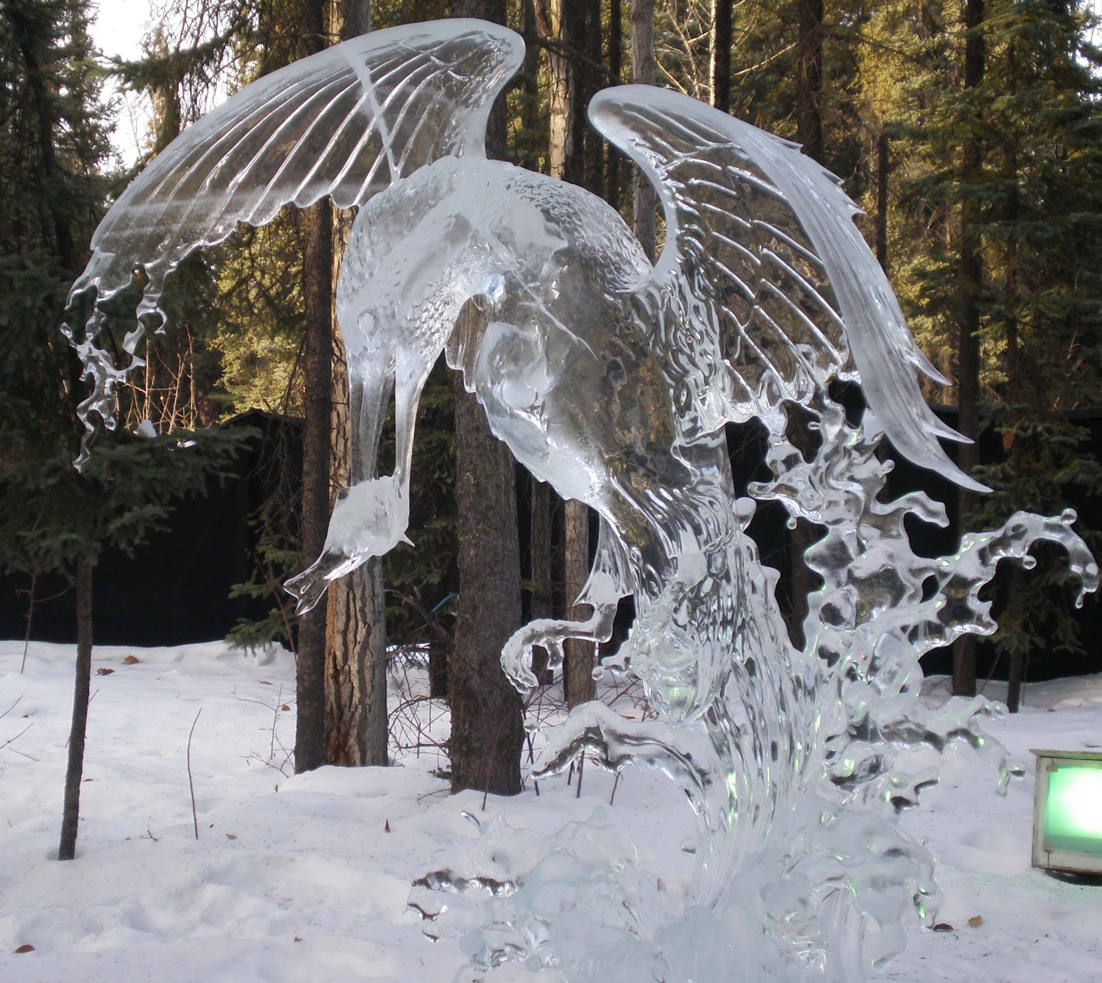 This Is Amazing: Amazing Ice Sculptures