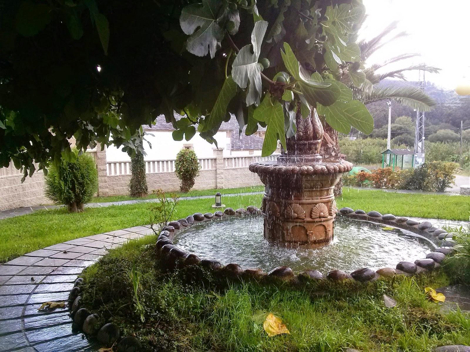 galicia viveiro