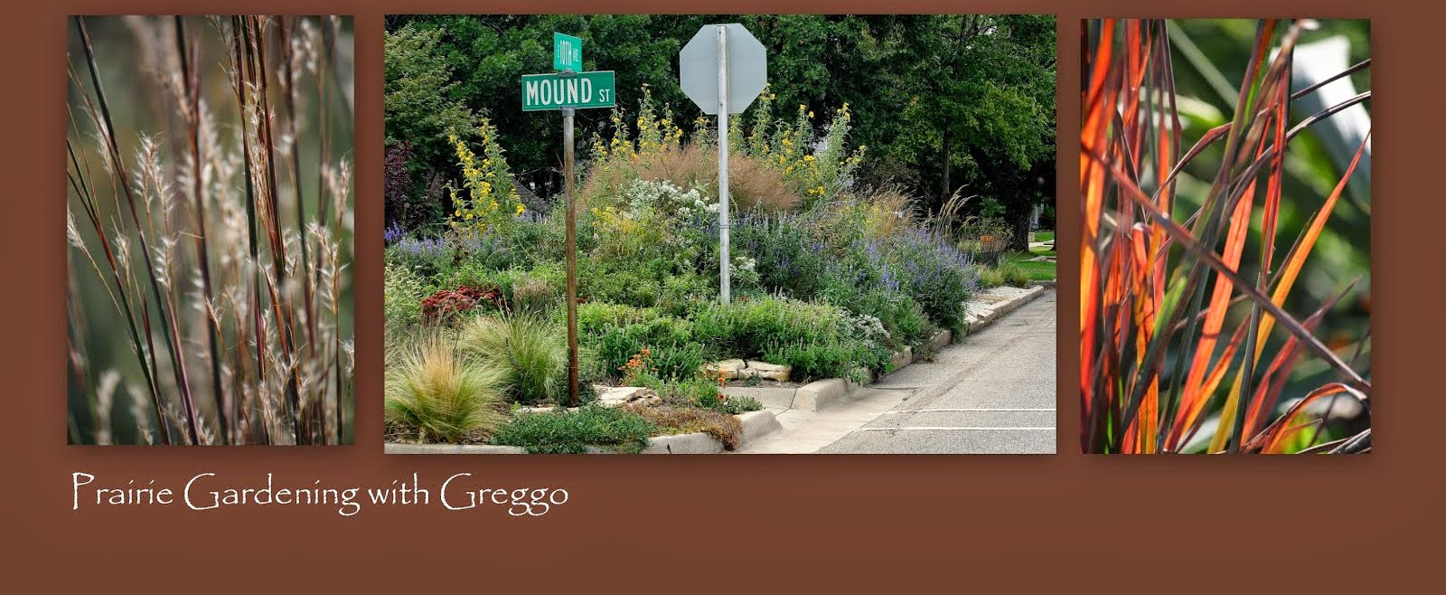 Gardening with Greggo