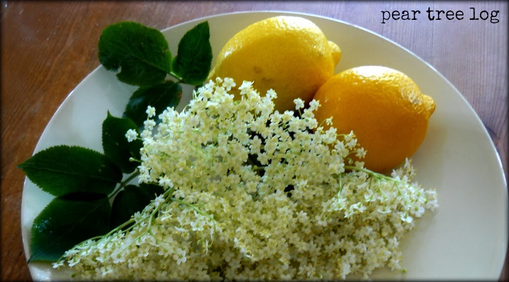 Elderflower Champagne...