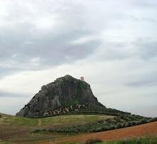 Pruna