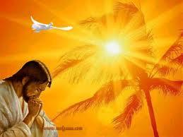 Sila Tarot: Cada Dia é uma Dádiva de Deus!