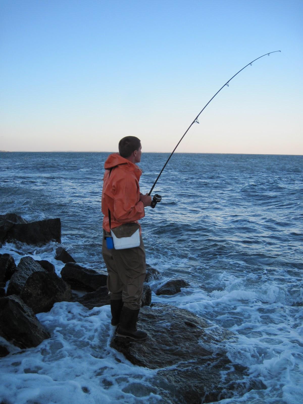 Rhode island striped bass crazy good stripers blues for Good bass fishing spots near me