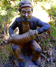Tasmanian Gnome
