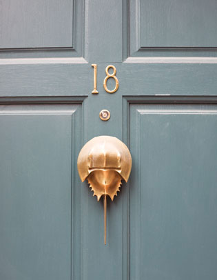 I Love How A Door Knocker Can Transform An Otherwise Plain Front Door.
