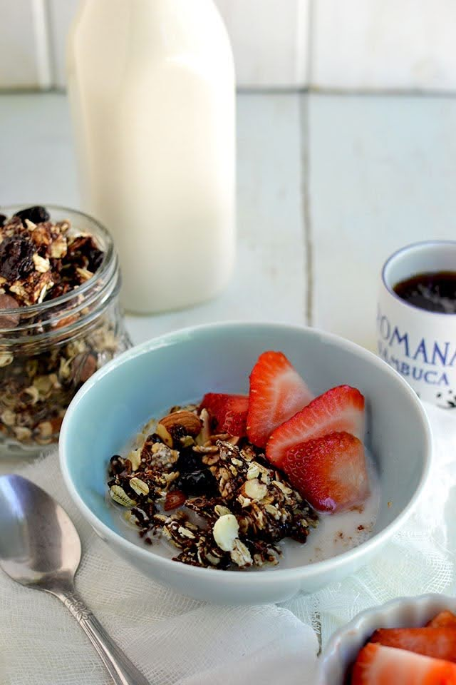 Granola with Chocolate & Raisins