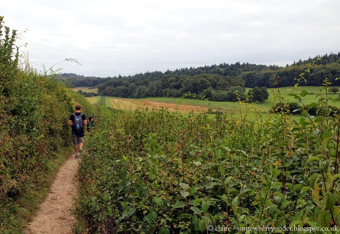 Strolling through the North Downs - Guildford, England