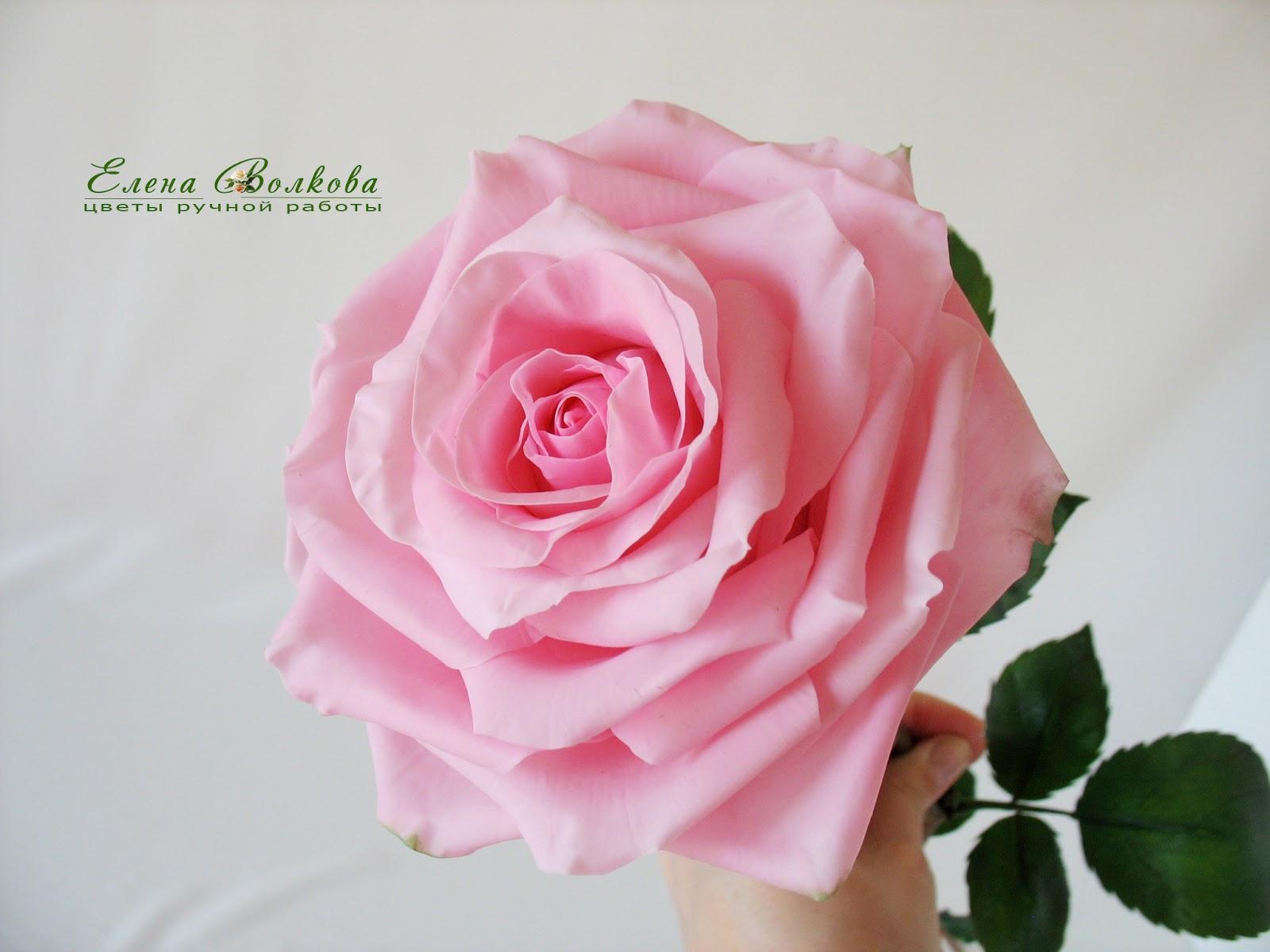 Большая роза из бумаги 75