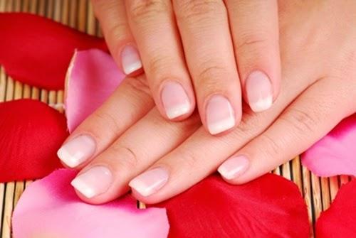 Chăm sóc móng tay với dầu dừa nguyên chất