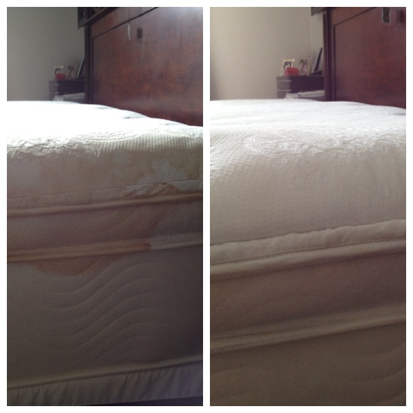 Upholstery Cleaning Miami : Free Stain Removal (786)942-0525: June 2013
