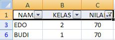 Hasil Filter Data Excel
