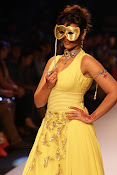 Ileana Ramp Walk Stills at IIJW 2015-thumbnail-6