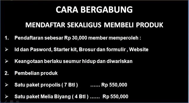 Picture Marketing Plan Pt. Melia Sehat Sejahtera 4