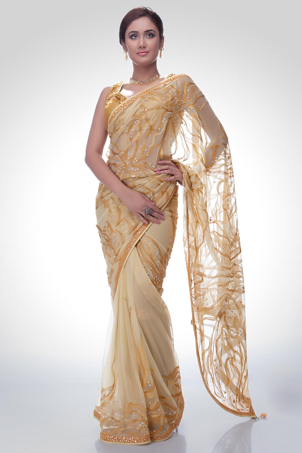 Indian Embroidered Sarees New Saree Trends Satya Paul Saree Collection 2012 2013 Latest