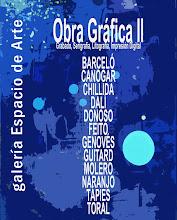 OBRA GRÁFICA II. GALERÍA ESPACIO DE ARTE