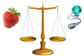 أيهما أثقل الإنترنت أم حبة الفراولة؟