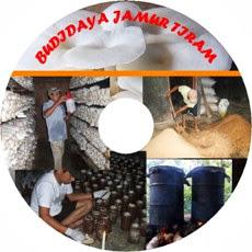 V-CD Cara Budidaya Jamur iram
