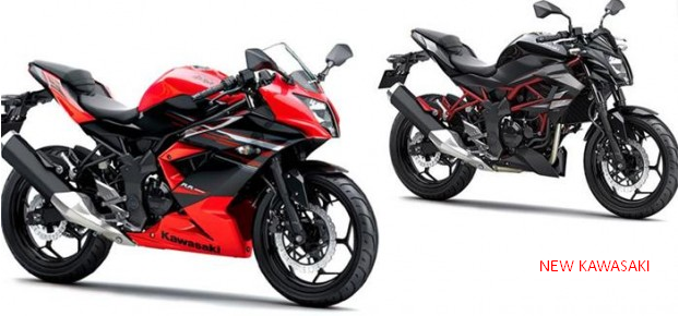 Dissimilarities Kawasaki Ninja 300 RR Z250SL In addition to Mono In Philippines