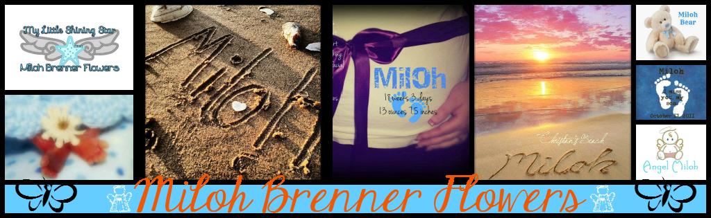 Memories From Miloh