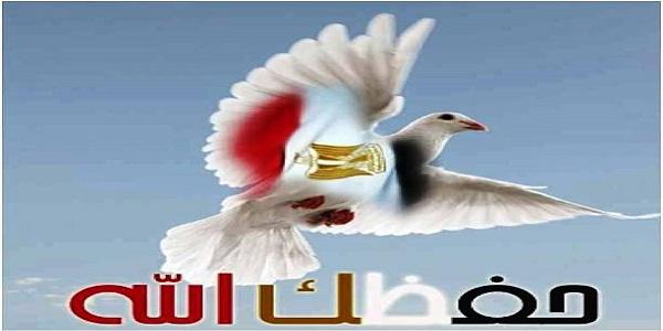 بشير العدل  يكتب  دعوات 25 يناير .. وإخوان الشتات