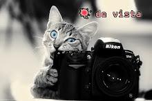 Visita mi Blog de Fotografía ♥: