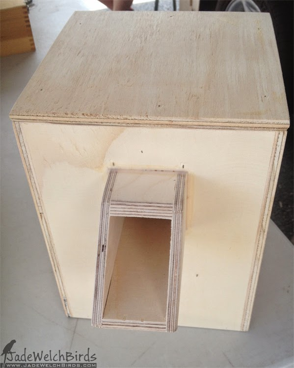insulated nest box hooded parrot jadewelchbirds jade welch