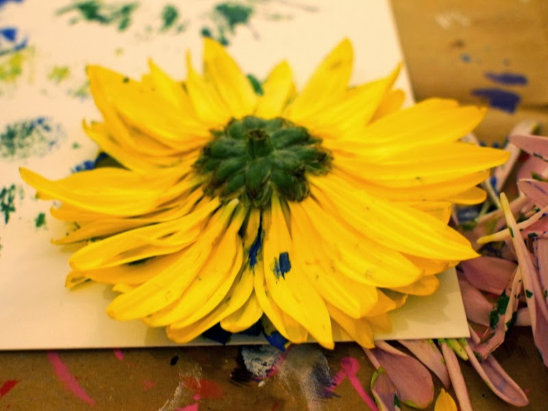 place flower head on paper and press down on all petals
