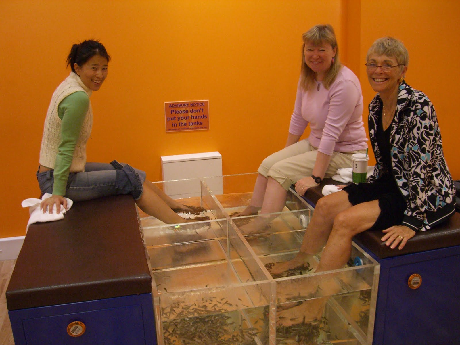 Inside the artisan fish pedicure for Fish spa near me
