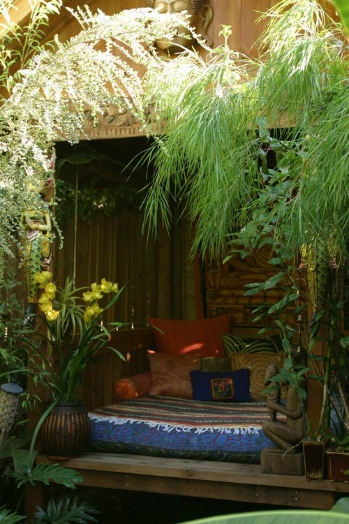 moon to moon creating a bohemian garden pt 1 the jungle