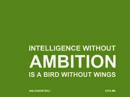 Cat de ambitios esti