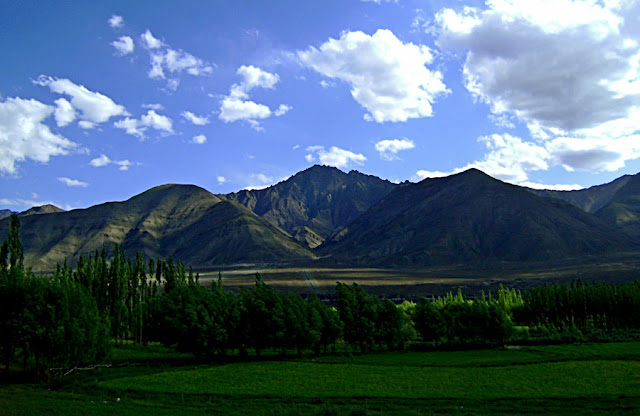 green mountains of Ladakh