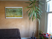 Decoratief stuc- en sponswerk